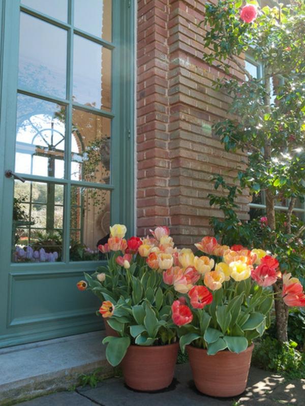 garten und landschaftsbau gartengestaltung ideen tulpen im blühmentopf