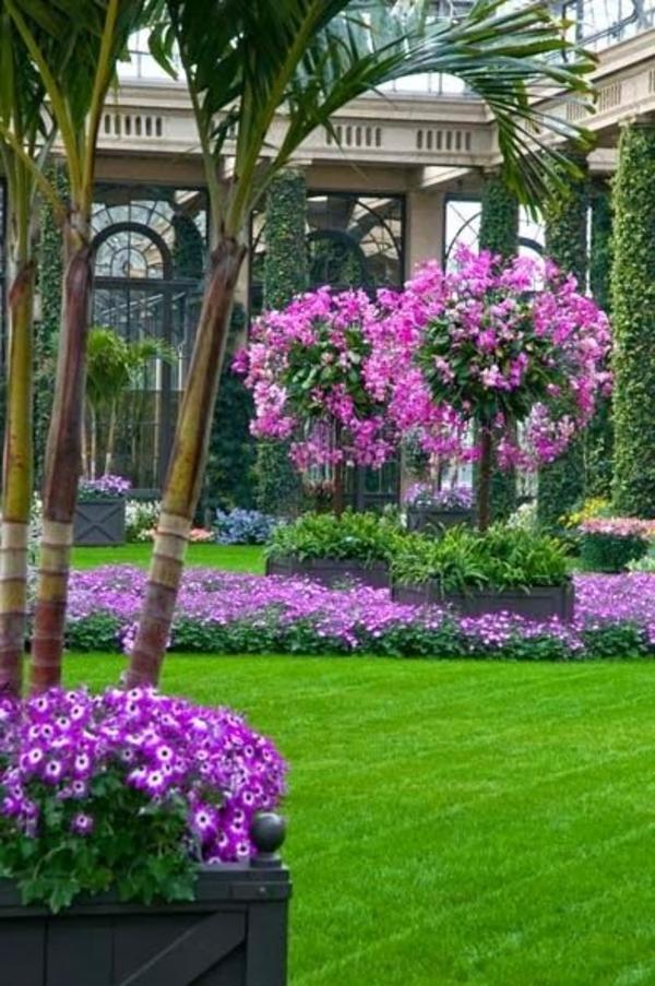 gartengestaltung bilder schöne bepflanzung lila