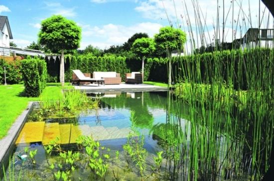 gartengestaltung hof landschaftsbau vorgartengestaltung ideen gartenteich pool wasserpflanzen