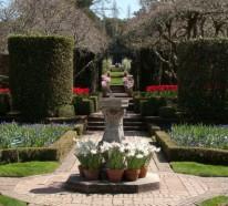 Gartengestaltung Ideen mit Frühlingsblumen – die Schönheit der Tulpen