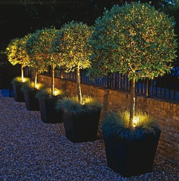 gartengestaltung in bilder beleuchtete pflanzen
