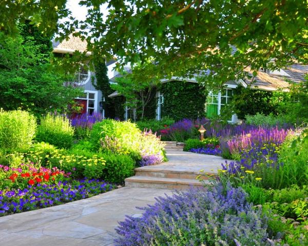 gestalten schön ästhetisch gesättigt gartengestaltung vorgarten dekorieren