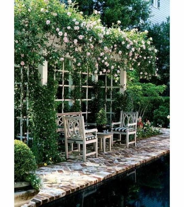 gartenmöbel kletterpflanzen pool