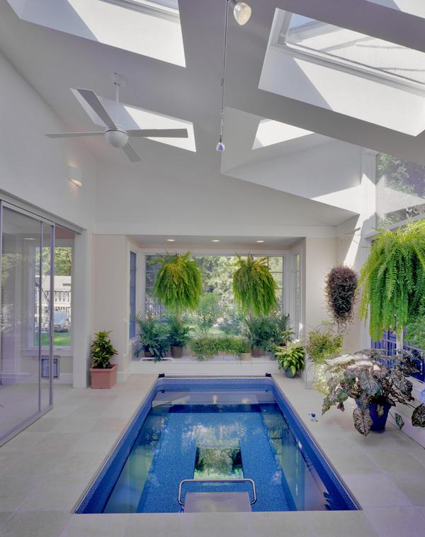 gewächshäuser einrichten mit pool pflanzen