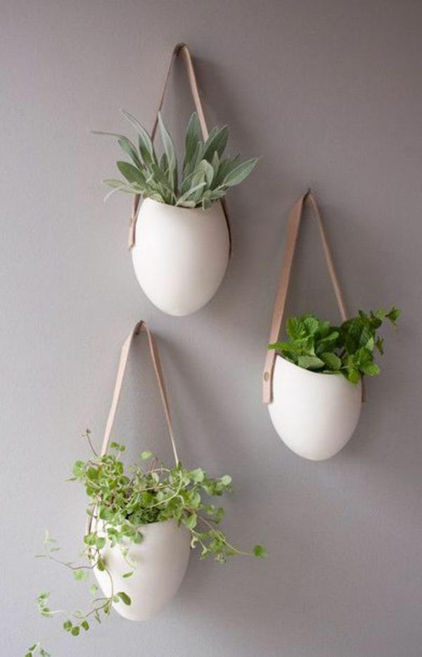 h ngende zimmerpflanzen und balkonpflanzen umweltgerechtes haus. Black Bedroom Furniture Sets. Home Design Ideas