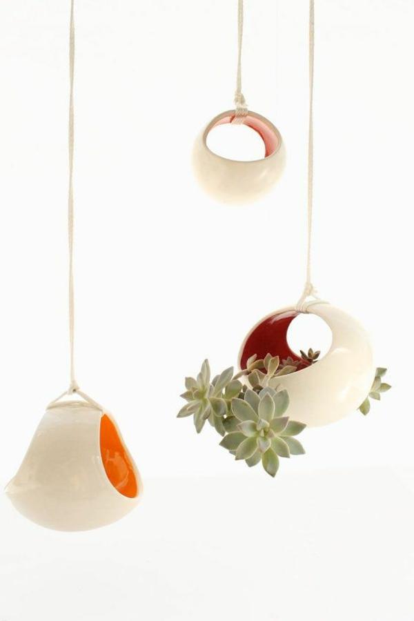 hängende zimmerpflanzen und balkonpflanzen originell
