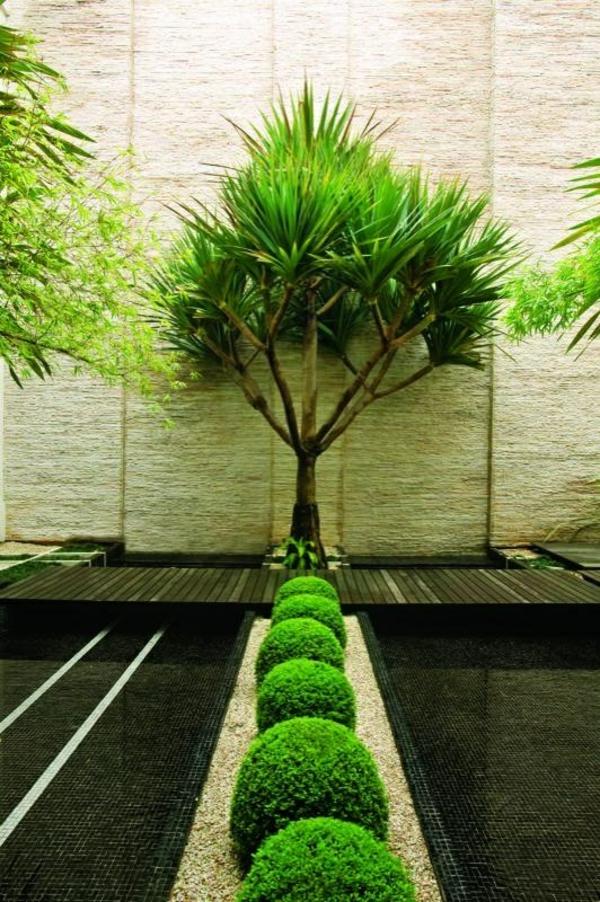 immergrüne pflanzen und interessanter bodenbelag