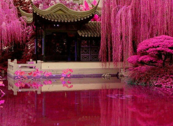japanischen garten gestalten rosa