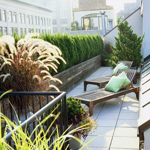 lebendige sichtschutz für terrasse bepflanzung
