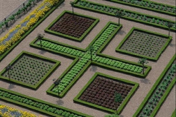 mathe formen pflanzen