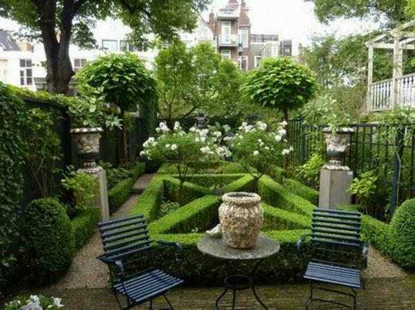 minimalist hinterhof immergrüne pflanzen