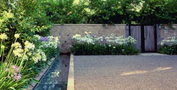 wasseranlage pflanzen moderne landschaft kies - Moderne Gartenbepflanzung