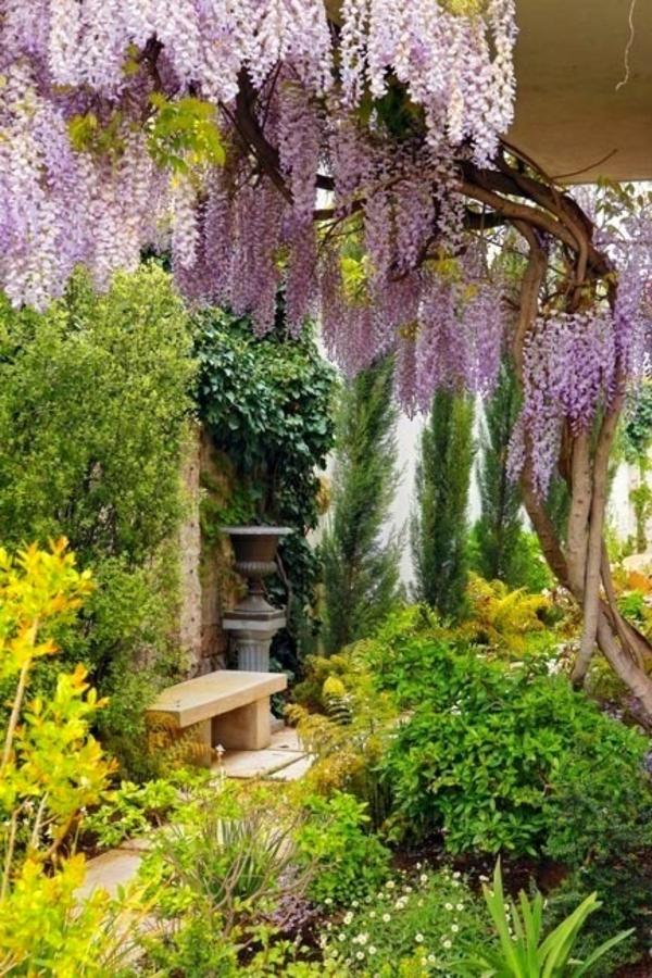 sanft und romantisch pflanzen bunt