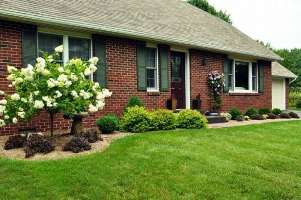 gras gestalten blumen schön klein vorgarten design