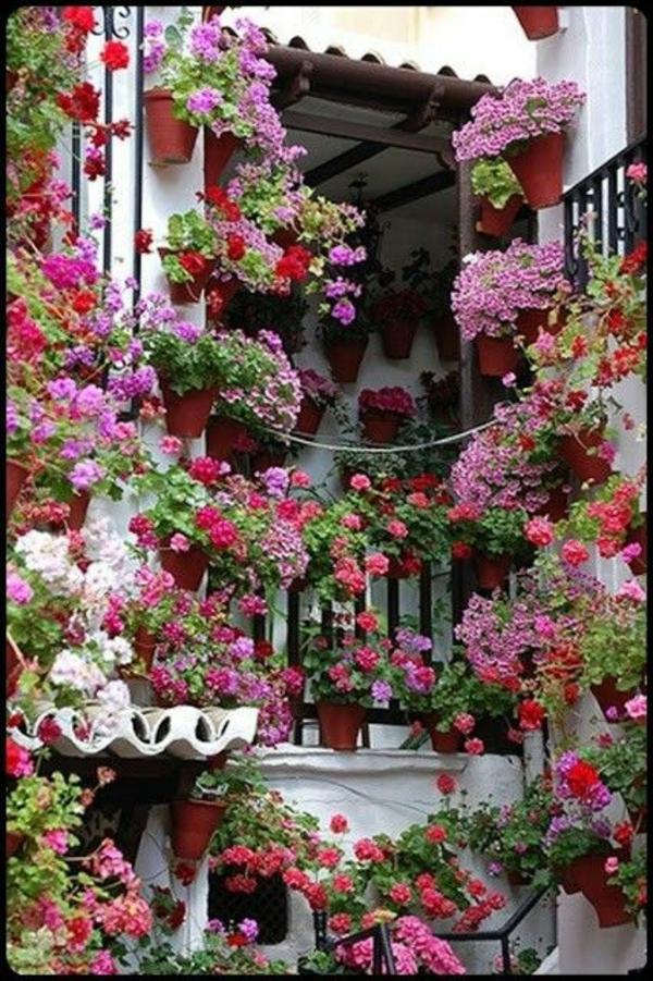 schönheit italienischen garten gestalten viele pflanzen vertikalgarten