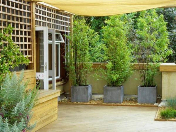 sichtschutz terrassse terrassenüberdachung holzbodenpflanzen