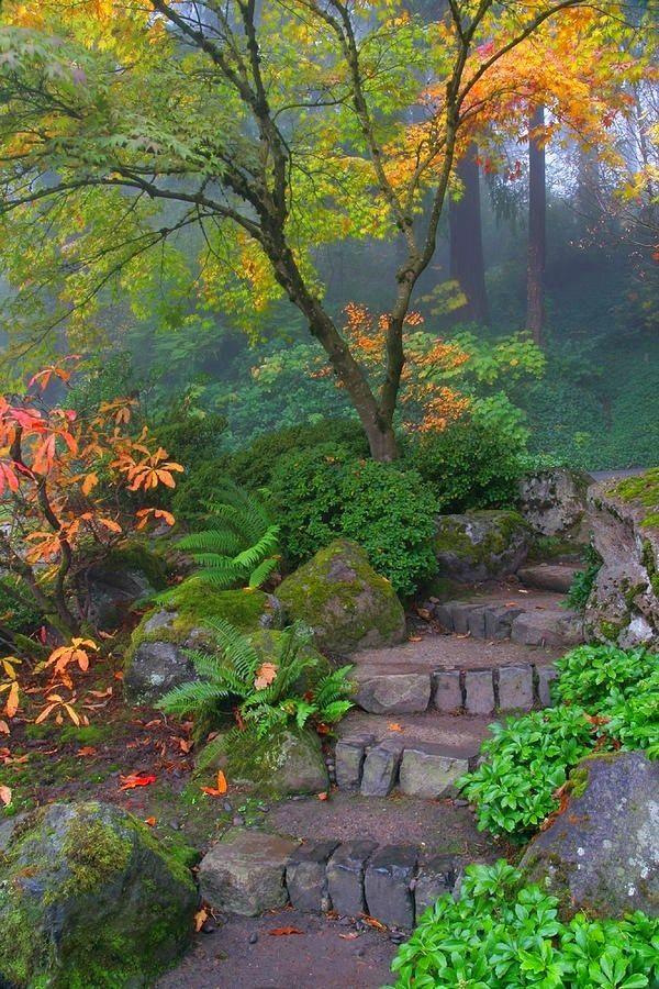 steinblöcke küstensteine gartenideen gehweg grüne pflanzen