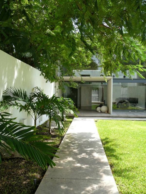 steinplatten gartenweg hof palmen