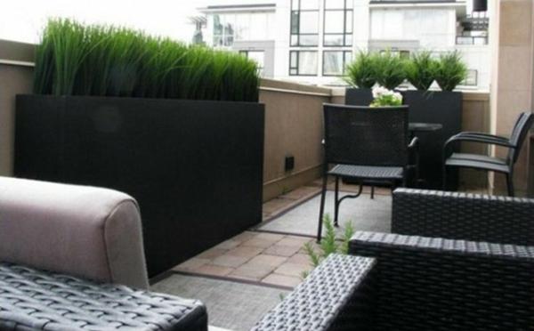 terrassensichtschutz ideen mit flanzen rattan gartenmöbel
