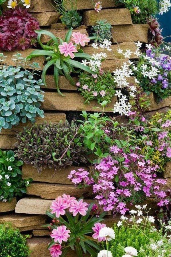 Dusche Sitzbank Gemauert : Garden Rock Wall Plants