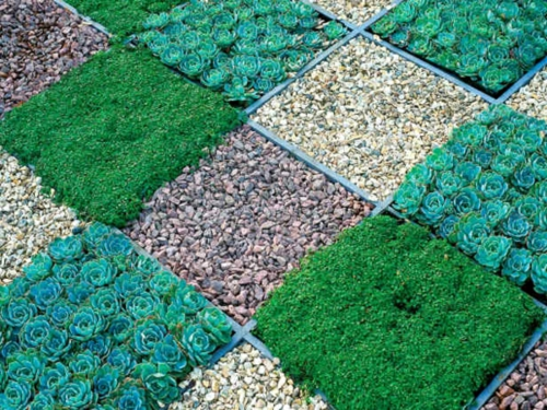vorgartengestaltung mit kies gras sukkulenten kieselsteine