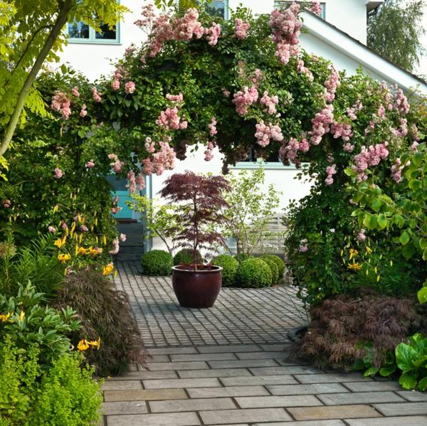 rosenbogen gartenrosen tor grün vorgarten