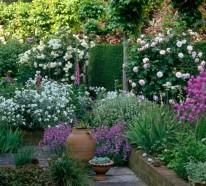 Vorgarten gestalten – 33 Bilder und Gartenideen