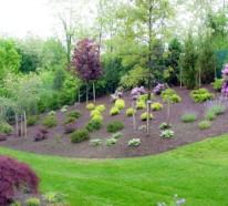 Vorgarten mit Kies gestalten – Bilder und Tipps für Sie