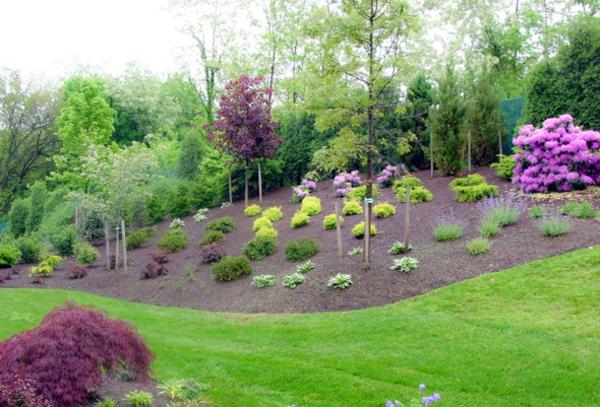 Vorgarten mit kies gestalten bilder und tipps f r sie for Gartengestaltung um einen baum