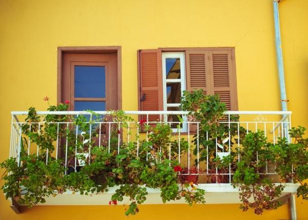 balkon bepflanzen balkonblumen balkonpflanzen balkon blumenkasten
