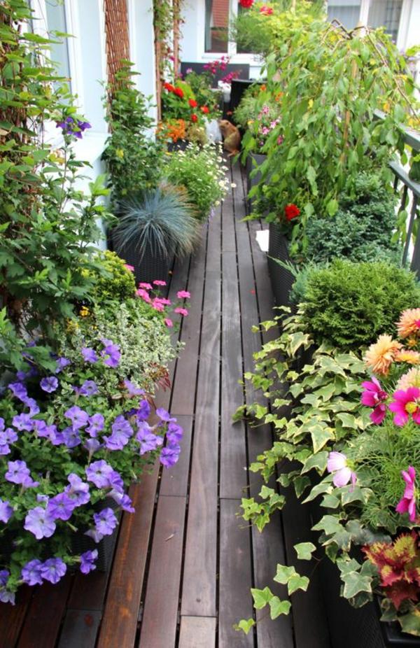 balkon bepflanzen die richtige bepflanzung des balkons. Black Bedroom Furniture Sets. Home Design Ideas