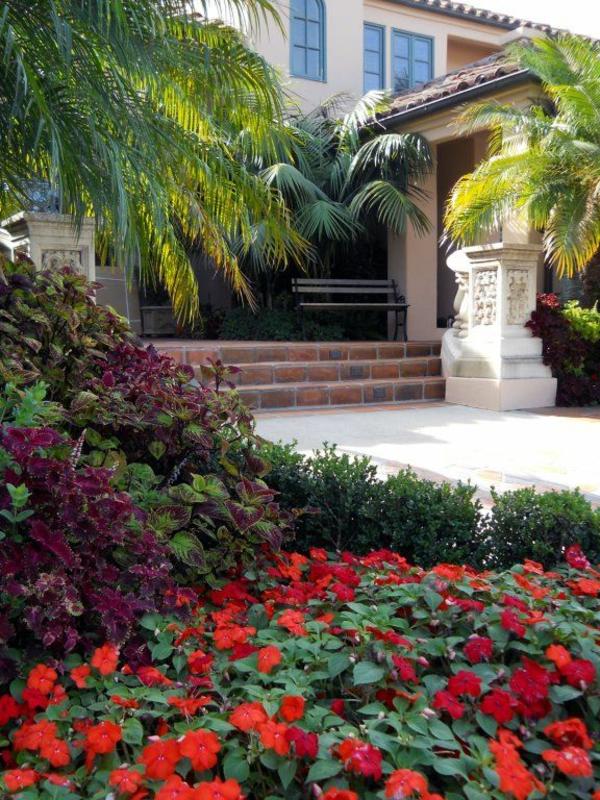 blumen landschaft exotisch palmen mittelmeer treppe
