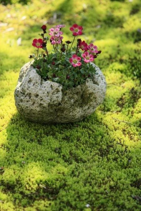 blumentöpfe-und-pflanzgefäße-kunstvoll-designs-stein