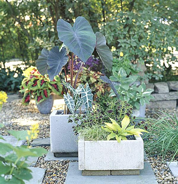 diy projekte garten bastelideen balkonpflanzen blumentopf