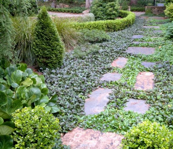 gartengestaltung gartenpflanzen günsel blau kriechend steinpflaster