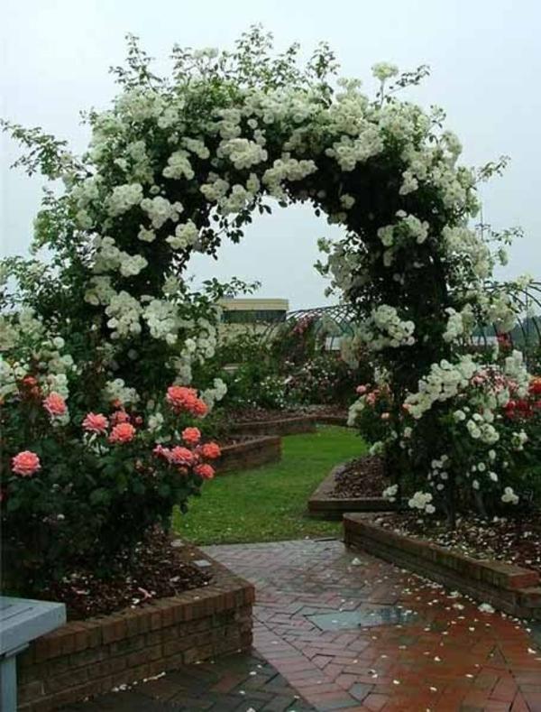 gartengestaltung ideen bilder rosen außenbereich