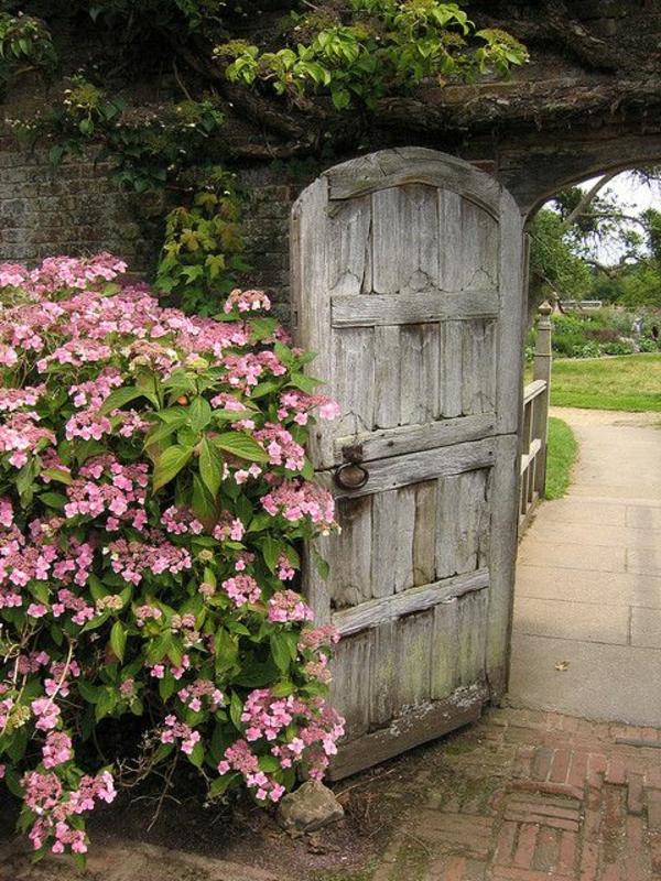 Rosen Moderner Garten :  trendy Ideen für Garten und Landschaft – moderne Gartengestaltung