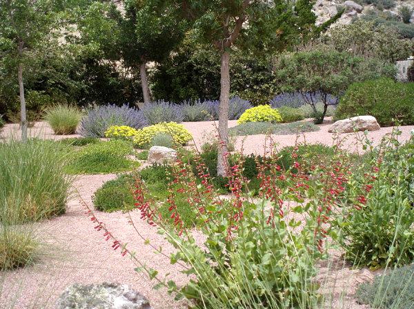 gartengestaltung und landschaftsbau kies stein dürrefeste pflanzen