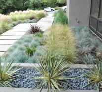 Gartengestaltung und Landschaftsbau – wassersparende Gartenideen