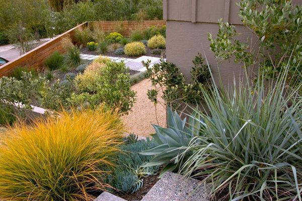 gartengestaltung und landschaftsbau wassersparende ideen pflanzenarten