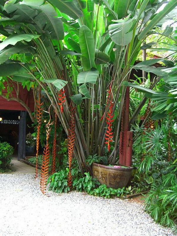 Ideen Anlegen Gartengestaltung Bilder Modern Blumen Pflanzen