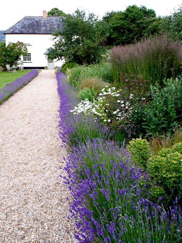 Gartengestaltung Ideen Anlegen Bilder Modern Kies