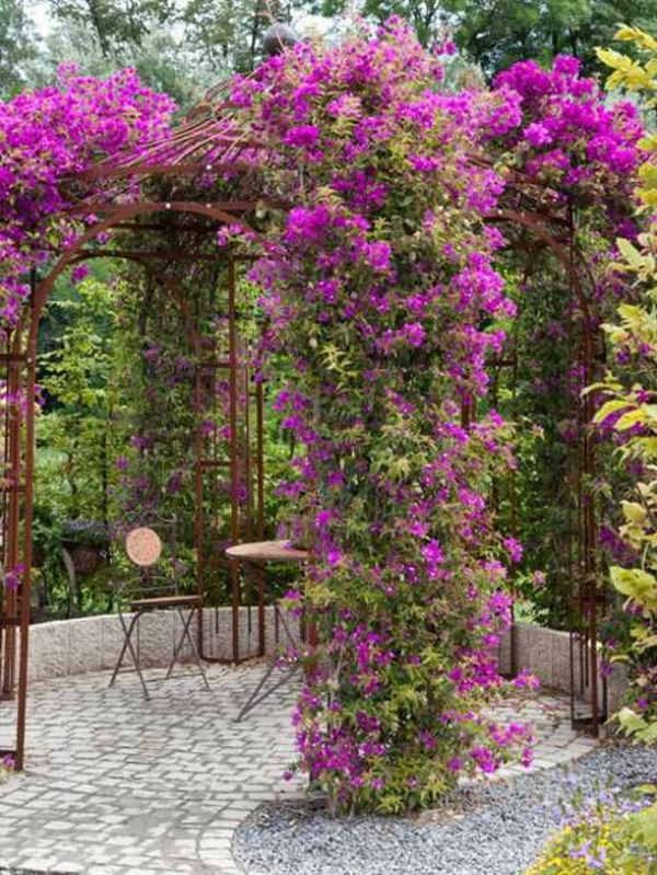 gartenlaube-selber-bauen-rosa-blüten