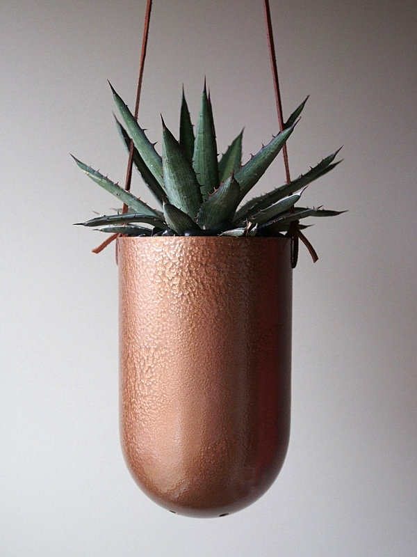 pflanzgefäße kaktus modern hängend blumentöpfe