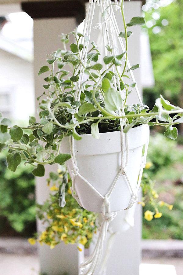 hängende balkonpflanzen diy projekte