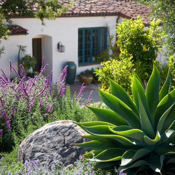 mediterran garten dürrefest pflanzenarten steine lavendel