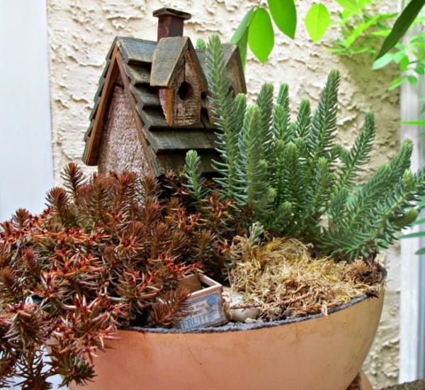 miniatur garten holzhäuschen pflanzen