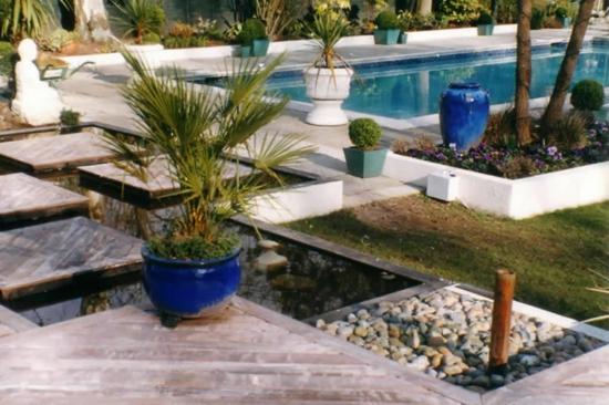 palmen mediterrane gartengestaltunng ideen mit kies und pflanzenarten