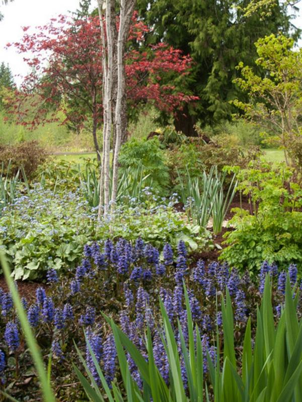 pflanzenarten ideen gartenpflanzen günsel blau pflegeleicht