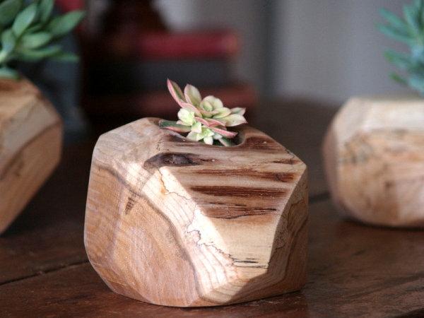 rustikal holz kaktus blumentöpfe und pflanzgefäße